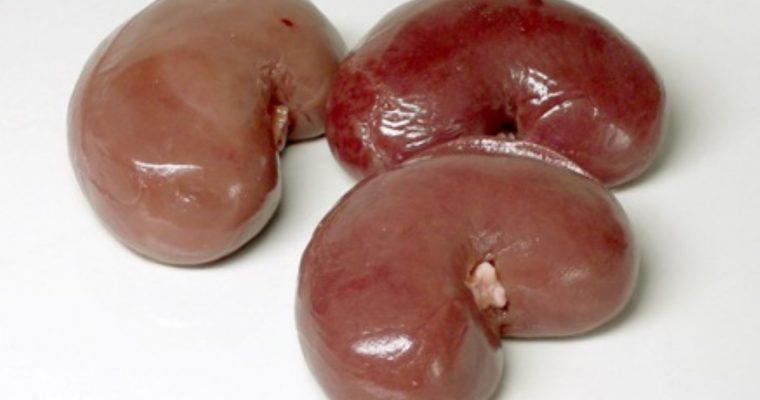 Mutton Kidney