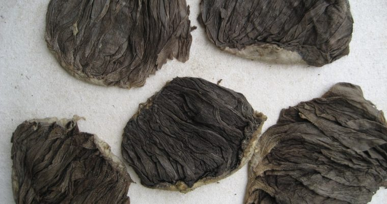Beef Omasum Salted